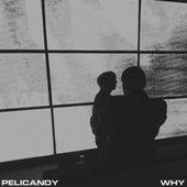 Why von Pelicandy