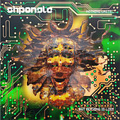 Nothing Lasts...but Nothing Is Lost (Remastered, 2019) de Shpongle