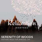 Serenity of Woods - Soothing Music for Spiritual Life de Various Artists