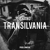 Transilvania de Shyno