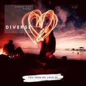 You Took My Love de Diverse