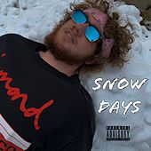 Snow Days by Taylor