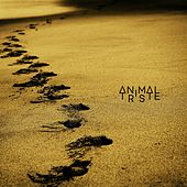 All About de Animal Triste