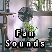 All in One Mesmerizing Fan Sounds Collection by Various Artists