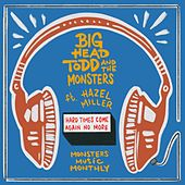 Hard Times Come Again No More by Big Head Todd And The Monsters