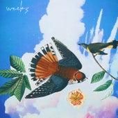 Weeks by Simen Mitlid
