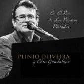 En el Rio de los Pájaros Pintados (feat. Coro Guadalupe) de Plinio Oliveira