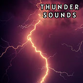 All in One Tunder Sounds Collection de Nature Sounds (1)