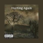 Hurting Again de AMG