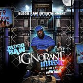 Ignorant Music (Instrumentals) (Instrumental) by Blood Raw