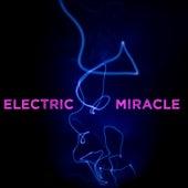 Electric Miracle de Various Artists