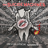 Awkward Always by Suicide Machines