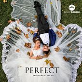 Perfect (Wedding Version) von Benny Martin