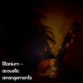 Titanium - Acoustic Arrangements by Acoustic Moods Ensemble