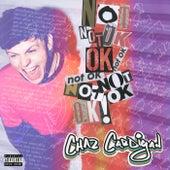 Not OK! de Chaz Cardigan