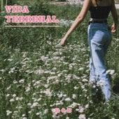 Vida terrenal by Rob