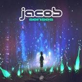 Senses by Jacob