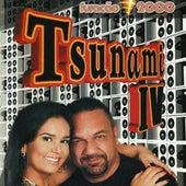 Tsunami IV de Various Artists