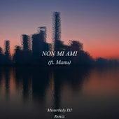 Non mi ami (Remix) di MisterItaly DJ