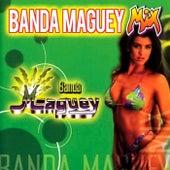 Banda Maguey Mix de Banda Maguey
