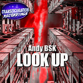 Look Up by Andy Bsk