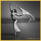 Free Like the Wind by Anti-Stress