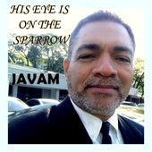 His Eye Is on the Sparrow de Javam