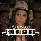 Saudades Gordinho by MC Marcelly