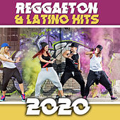 Reggaeton & Latino Hits 2020 de Various Artists