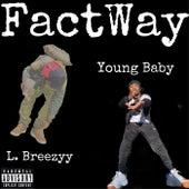 FactWay de Young Baby