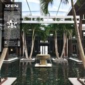 Aggressive Distortion by I-Zen