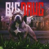Big Dawg von R G