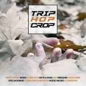 Trip Hop Crop van Skye