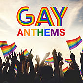 Gay Anthems de Various Artists