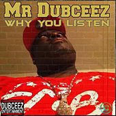 Why You Listen by Mr Dubceez