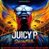 Snowfall #1 de Juicy-P