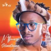 Selimathunzi von Mthunzi