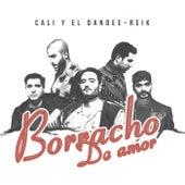 Borracho De Amor by Cali Y El Dandee