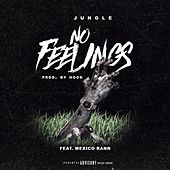 No Feelings by Jungle