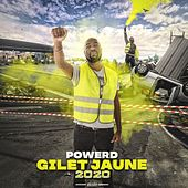 Gilet Jaune 2020 by Power D