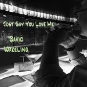 Just Say You Love Me (I Believe It) de David Wakeling