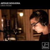 Lírio Rosa von Arthur Nogueira