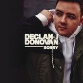 Sorry de Declan J Donovan