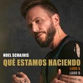Qué Estamos Haciendo - Lado A y Lado B von Noel Schajris
