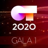 OT Gala 1 (Operación Triunfo 2020) de German Garcia