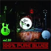 100% Pure Blues, Vol. 20 de Eric Von Schmidt, Lightnin' Hopkins, Otis Smothers, Magic Sam, T Bone Walker