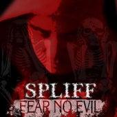 Fear No Evil von Spliff