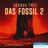 Das Fossil 2 von Joshua Tree