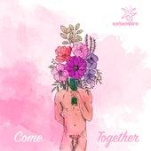 Come Together by Estambre