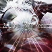 25 Urban Storm Peace de Thunderstorm Sleep